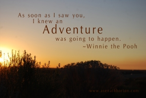 pooh-quotes-adventure